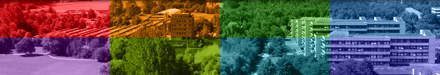 Goethe Uni Bewerbung Wintersemester 2021